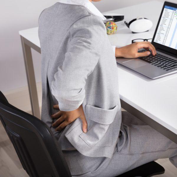 postura in azienda proleven