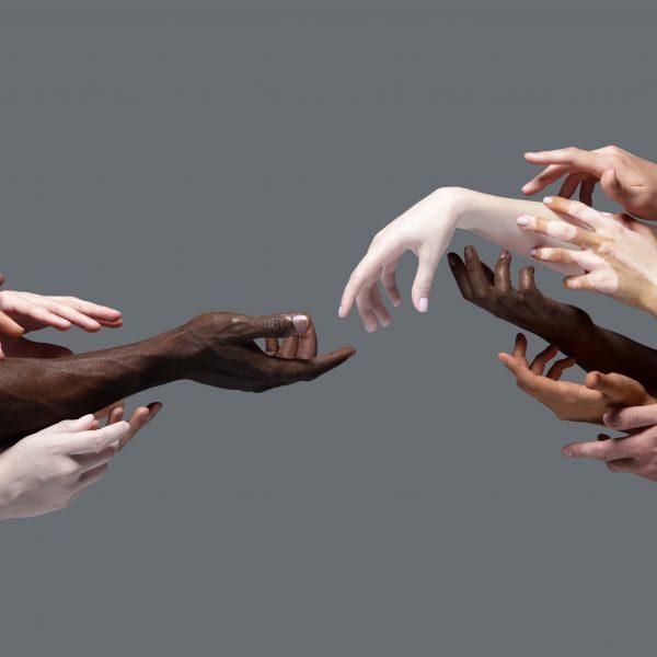 Diversity & Inclusion Proleven