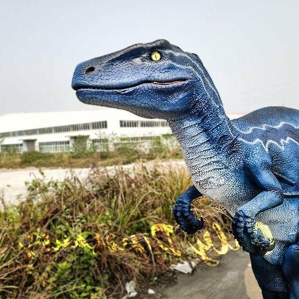 Jurassic Orienteering Proleven