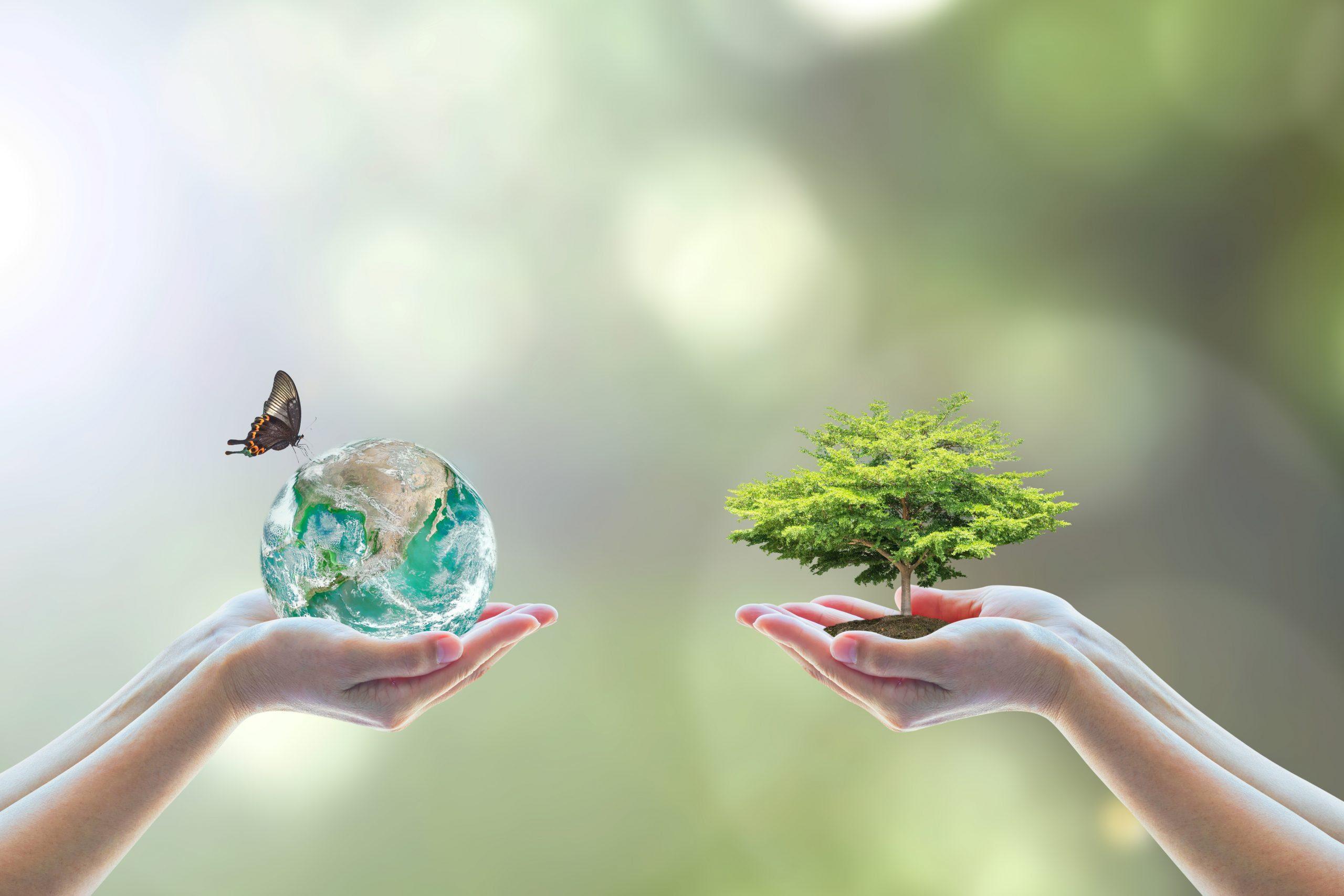 Sostenibilità Proleven