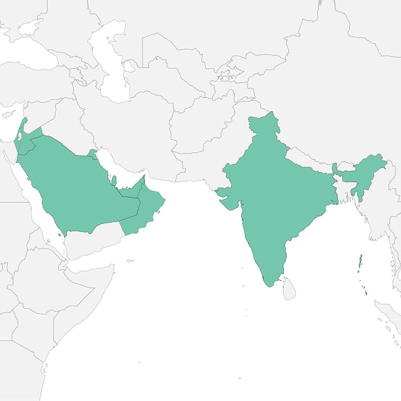 I clienti Proleven in Asia